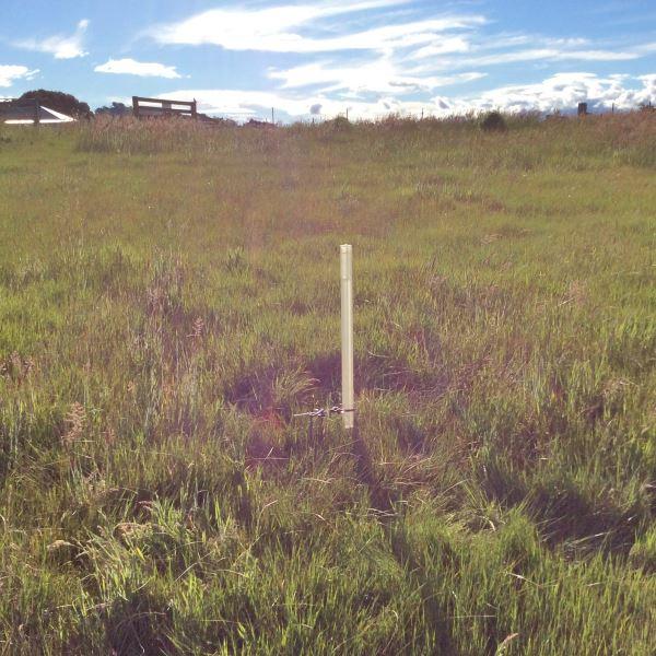 Soil4-600x600